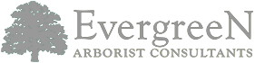 Evergreen Arborist Consultants Logo