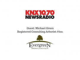 michael-greenregistered-consulting-arborist-602-1
